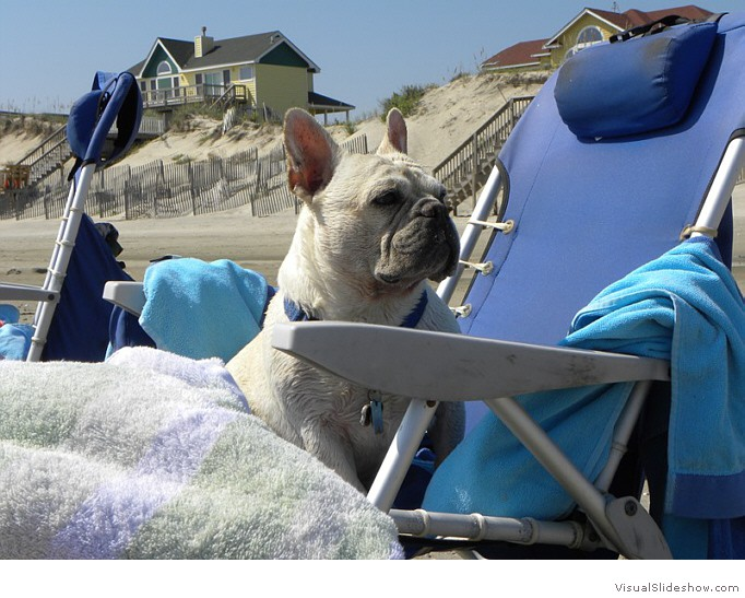 Roger relaxing at the beach!